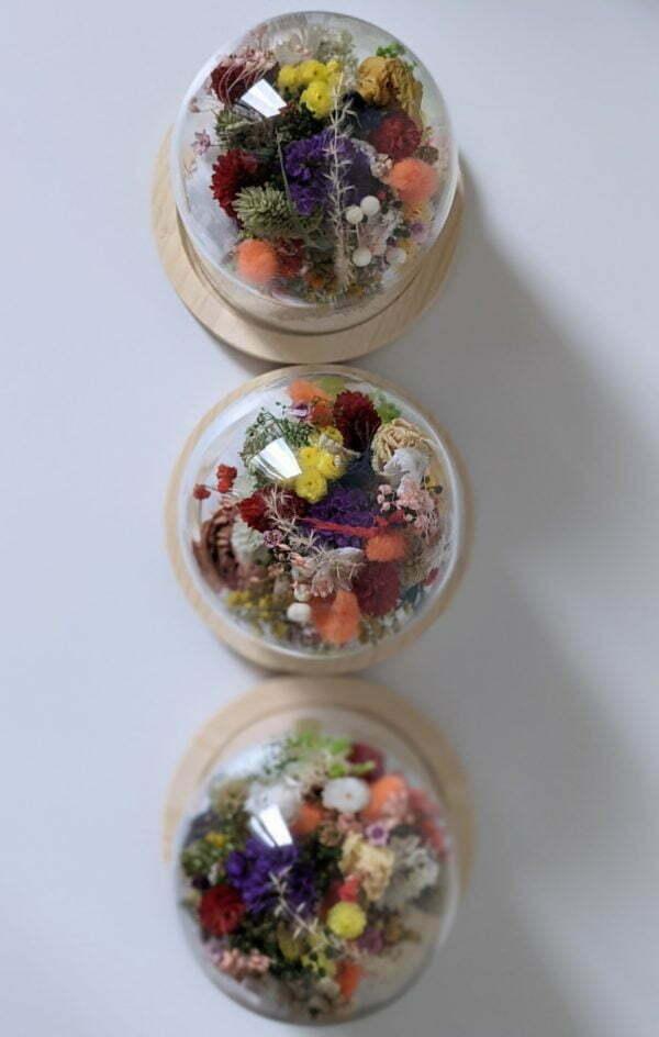 Cloche en verre de fleurs séchées et fleurs préservées pour décoration d'intérieur, Flora 4