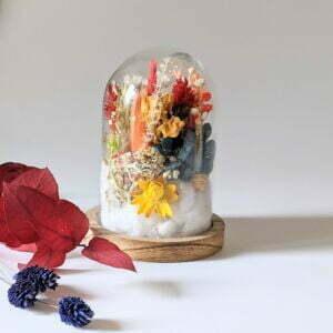 Cloche en verre de fleurs séchées et fleurs préservées pour décoration d'intérieur, Flora
