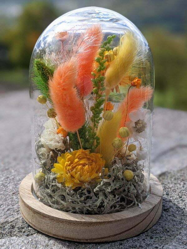 Cloche de fleurs séchées en verre et bois pour décoration d'intérieur, Maya 3