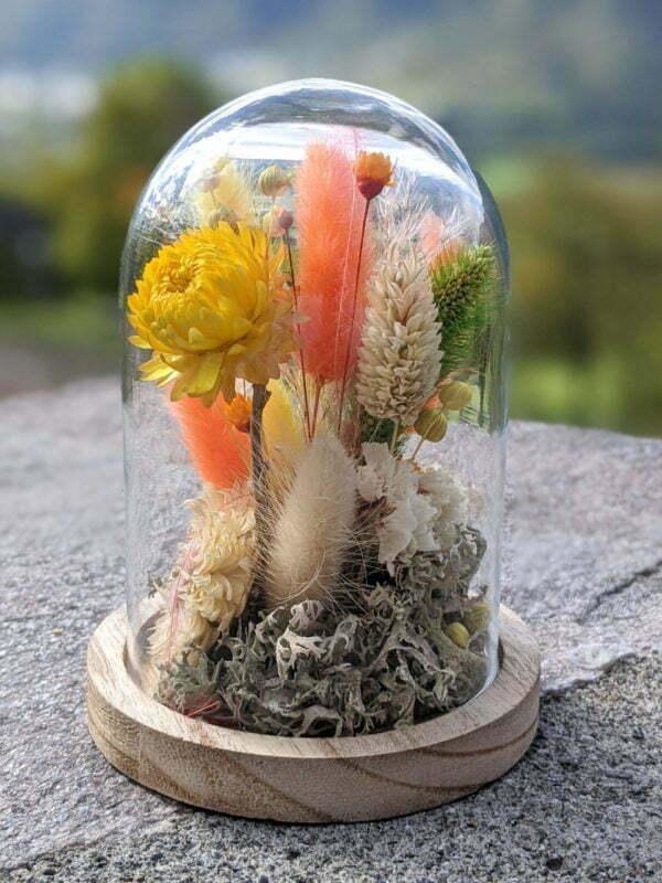 Cloche de fleurs séchées en verre et bois pour décoration d'intérieur, Maya 2