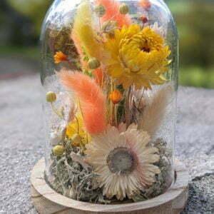 Cloche de fleurs séchées en verre et bois pour décoration d'intérieur, Maya