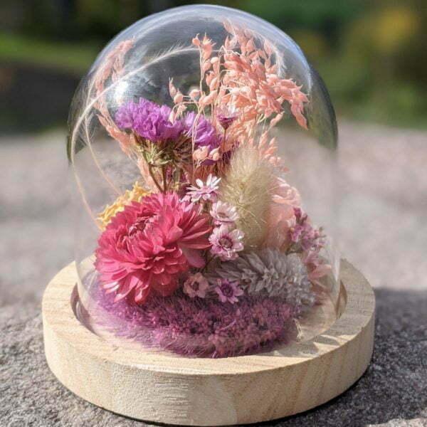 Cloche en verre et fleurs séchées pour décoration d'intérieur, Pink Purple 3