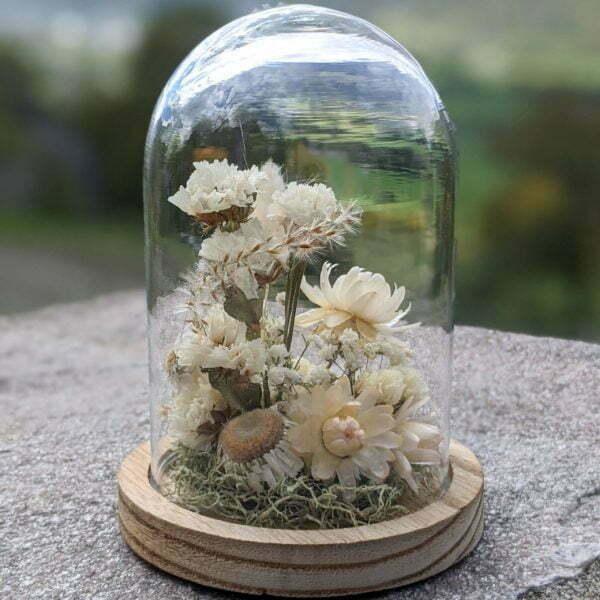 Cloche en verre et fleurs séchées pour décoration d'intérieur, Véga