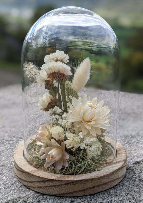 Cloche en verre et fleurs séchées pour décoration d'intérieur, Véga 2