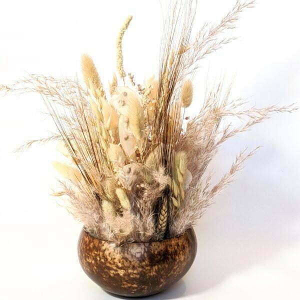Composition de fleurs séchées & coque de noix de coco naturelle, Grain de Sel