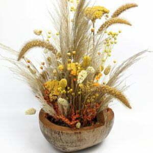 Composition de fleurs séchées dans une magnifique noix de coco naturelle pour décoration d'intérieur, Terracotta