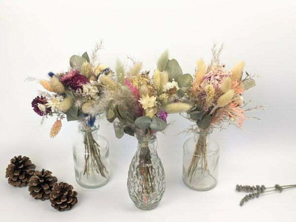 Trio de mini bouquets de fleurs séchées, Gallia