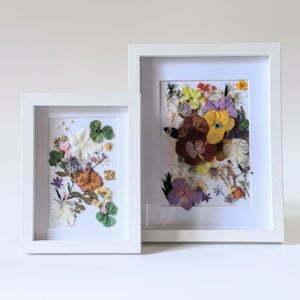 Cadre vitrine en bois blanc arrangement de fleurs stabilisées et fleurs séchées, Biarritz