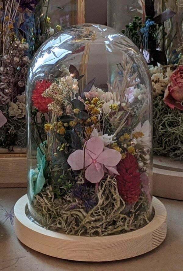 Cloches en verres & fleurs séchées et préservées pour décoration d'intérieur ensoleillée, Paula 3