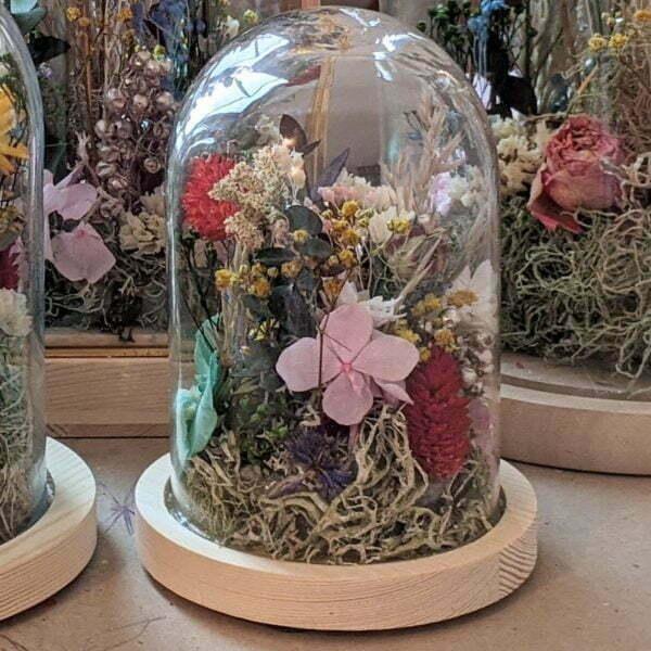 Cloches en verres & fleurs séchées et préservées pour décoration d'intérieur ensoleillée, Paula 4