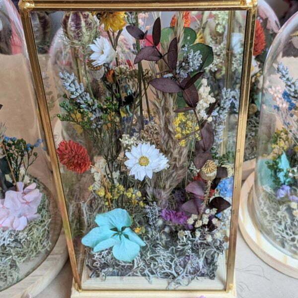 Cloches en verres & fleurs séchées et préservées pour décoration d'intérieur ensoleillée, Paula 2