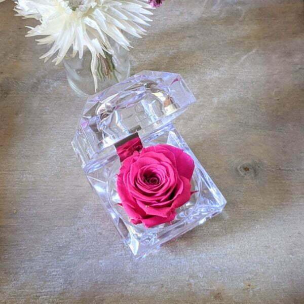 Rose éternelle stabilisée dans son écrin, Diamond 4