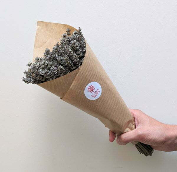 Botte de lavande naturelle séchée pour création de décoration d'intérieur DIY